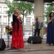 第2559回 Festival of Portugal Day