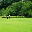 暑い夏の再来を待っている神代植物公園 その3