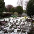 春分の日、相模原市緑区も積雪が!