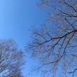 2月7日の朝の空とわたし