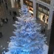 お正月とクリスマス~