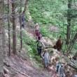 「猿留山道を歩く会」(第27回全道フットパスの集いinえりも)下見~妙見様まいり