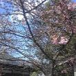 ☆〜3月のごはん〜☆