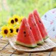 夏を楽しんで下さい!