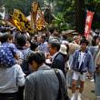 2017 下高井戸八幡 秋の例大祭!