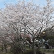 三重県伊勢志摩で賃貸物件は当社で