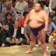大相撲九州場所中盤戦