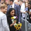 ヘンリー王子とメーガン妃が結婚後初のロイヤルツアーに出発