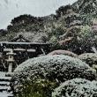 『雪景』 旧安田別荘