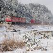 見慣れた列車がイケメン化する冬