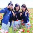 鴻巣ポピー祭り2018