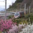 春色の海岸線とアンパンマン列車♪(3月19日)