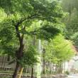 檜枝岐温泉へ