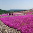 茶臼山高原「芝桜まつり」に行ってきました