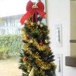 ~クリスマスツリー飾りました~