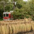 9月25日の神戸電鉄 稲架掛け