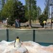 風の季節の前に・・・東武動物公園
