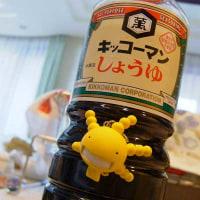 【写真】菌撮影 壱