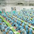ヴェトナムがナマズの米国輸入規制についてWTOへ訴え提出