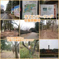 大阪近郊でオリエンテーリング!第3弾「服部緑地公園」