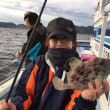 4日カワハギ釣果