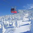 蔵王スキー場(樹氷)旅行