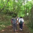 雨の合間の「青木ヶ原樹海」ハイキング