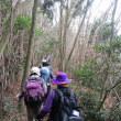 ⑪ 水ヶ丸山登山 : セノハラ峠  UP3日目