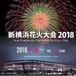 巷の風景〈今回が1回目の「新横浜花火大会2018」新感覚花火