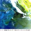 気候変動観測衛星「しきさい」・超低高度試験衛星「つばめ」打上げ成功!H2Aロケットが別高度に2機投入