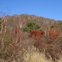 赤城山で紅葉狩り