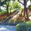 かにが沢公園の彼岸花開花情報2017.9.18現在