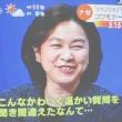 華春瑩  华 春莹、拼音: huà chūn yíng  中国外交部報道官