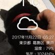 ひえーー1℃