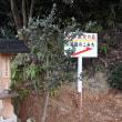 加西市畑町にある高峯神社の裏山には重要な意味のあるものが祀られているようです