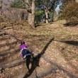 桜ヶ丘公園のあとはユニディ