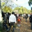 今年最後の史跡探訪・京都御苑(御所)
