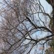 北九州市立美術館本館「ターナー風景の詩」