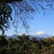 篠窪(しのくぼ)から見える素敵な「雪の富士山」が戻ってきた