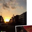 猫ちゃんと夕日