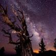時空物語(4)  誰が・・夢を観ているのか