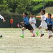 第19回JAあいち知多 少年サッカー大会、途中経過及び試合日程