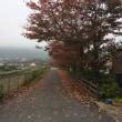 風吹けば風に流るる木の葉かな