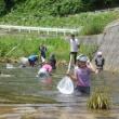 4年生水質調査part2