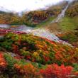 北海道の林道問題