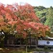 雷山千如寺大悲王院(福岡県糸島市)に紅葉を撮りに