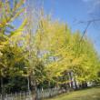 神立公園の散策