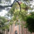 広州 中山大学