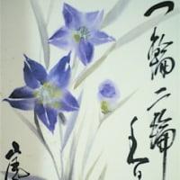 可憐な花たち 桔梗の青。