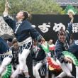 ◎夏すずめ2017(44)柳生祭連-2